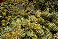 Ananas Lizenzfreie Stockbilder