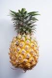 Ananas Ananas fresco Immagine Stock Libera da Diritti