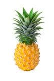 Ananas, ananas odizolowywający na białym tle obrazy stock