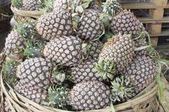Ananas angehäuft im Korb Lizenzfreie Stockfotos