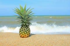 Ananas auf dem Strand Stockfotos