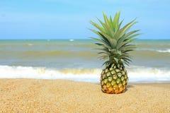 Ananas auf dem Strand Stockfoto