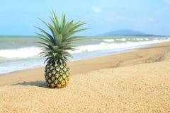Ananas auf dem Strand Lizenzfreies Stockbild