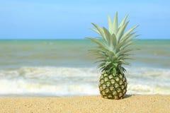 Ananas auf dem Strand Stockbild
