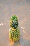 Ananas auf dem Strand Stockfotografie