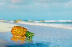 Ananas auf dem Strand reflektierte sich im Wasser Stockfoto