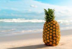 Ananas auf dem Strand, Sommerferienzusammenfassung Lizenzfreie Stockfotos