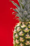 Ananas auf rotem Hintergrund stockfotos