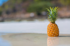 Ananas auf Seehintergrund Stockfotografie