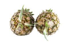 Ananas auf weißem Hintergrund Lizenzfreies Stockbild