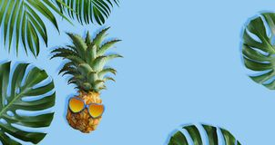 Ananas avec des lunettes de soleil et des feuilles tropicales Images stock