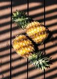 Ananas avec l'ombre de la lumière Images libres de droits
