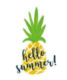 Ananas avec le ` d'été de ` des textes bonjour Fond d'été d'ananas Photographie stock libre de droits