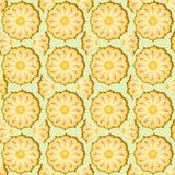 Ananas bezszwowy Fotografia Royalty Free