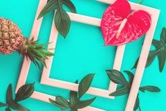 Ananas-, blomma- och sidaramar på mintkaramellbakgrund fotografering för bildbyråer