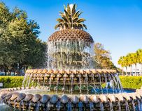 Ananas-Brunnen in Charleston, Sc stockfotos