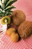 Ananas, Cocos, Kiwi und Mineralwasser Lizenzfreie Stockfotos