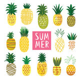 Ananas Collection. Cute Ananas Collection, vector illustrations Stock Images