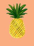 Ananas coloré Photographie stock libre de droits