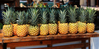 Ananas comosum, Pineapple is one tropical fruit Royalty Free Stock Images