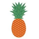 Ananas con i fogli Fotografia Stock Libera da Diritti