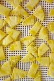 Ananas coupé dans un dessiccateur de déshydrateur, plan rapproché Vue de ci-avant photo libre de droits