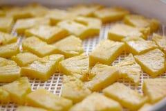 Ananas coupé dans un dessiccateur de déshydrateur, plan rapproché Vue de ci-avant photo stock