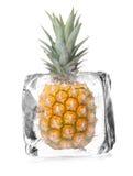 Ananas in cubetto di ghiaccio Fotografia Stock Libera da Diritti