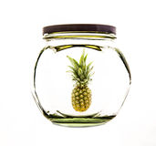 Ananas d'isolement Photographie stock libre de droits