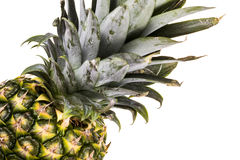 Ananas d'isolement Photos stock