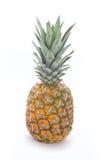 Ananas d'isolement sur le blanc Photographie stock