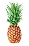 Ananas d'isolement sur le fond blanc Photos stock
