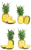 Ananas d'isolement sur le fond blanc Ensemble ou collection Photos libres de droits