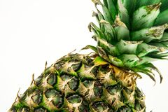 Ananas d'isolement sur le fond blanc Fruit d'été Photographie stock libre de droits