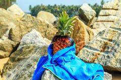 Ananas dans des lunettes de soleil sur la plage Photos libres de droits