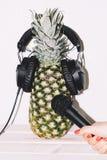 Ananas dans la main d'écouteurs avec le microphone image libre de droits