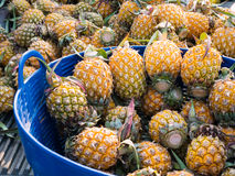 Ananas in de blauwe plastic mand Stock Fotografie