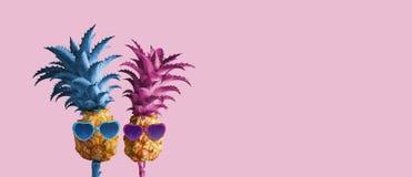 Ananas de couples l'été minimal de fond rose Image libre de droits
