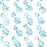 Ananas del blu di lerciume Fotografia Stock Libera da Diritti