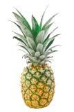 Ananas del primo piano isolato sui precedenti bianchi Fotografia Stock