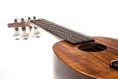 Ananas delle ukulele Immagini Stock