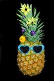 Ananas in den Farbtönen Lizenzfreie Stockbilder