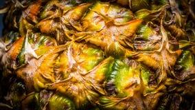 Ananas dichte omhooggaand met warme kleuren Stock Fotografie
