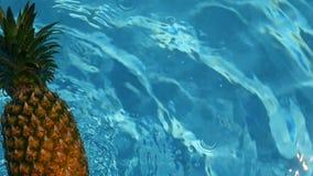 Ananas, die in blaues Wasser im Swimmingpool schwimmt Gesundes rohes biologisches Lebensmittel Saftige Frucht Exotischer tropisch stock footage