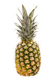 Ananas die op wit wordt geïsoleerdg stock foto's