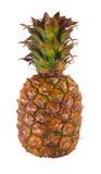 ananas dojrzały Zdjęcia Royalty Free
