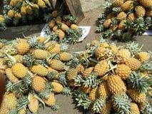 Ananas dolci della foto naturale fotografia stock libera da diritti