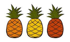 Ananas drei Stockfotos