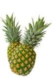 Ananas due Immagine Stock Libera da Diritti