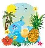 Ananas e bevanda Immagini Stock Libere da Diritti